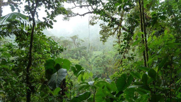 Ezer méterrel az Amazonas alatt