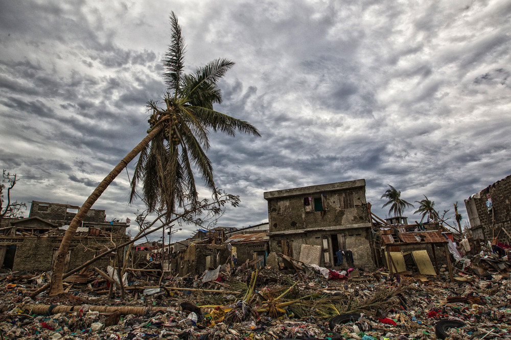 Tájkép hurrikán után