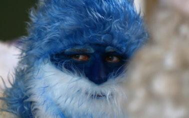 Djed Moroz