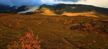 Messze fönt északon – Bauer Éva fotói
