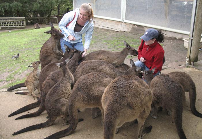 Regénytár Nívódíj: üzenet a kenguruk földjéről