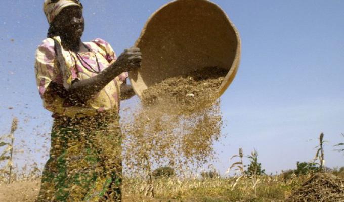 Levél Nigériából – újabb pályázati fejlemények!